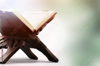 مدرسة القرآن - المستوى الرابع - قرآن - أ/ هدى عبدالرازق (إناث)